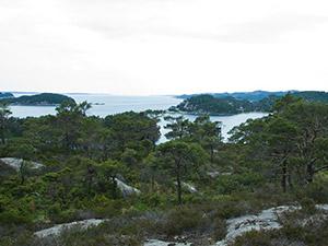 Utsikt fra Lysøen