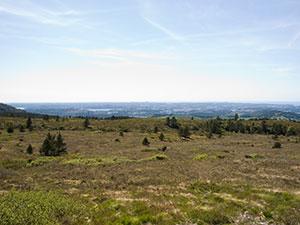 Utsikt mot Fitjarøyene og Bømlo