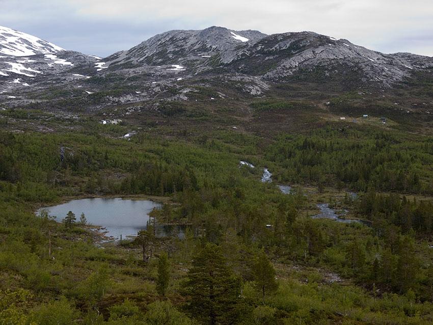 Steindalen