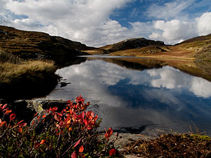 Nederste vann i Tjørnadalen